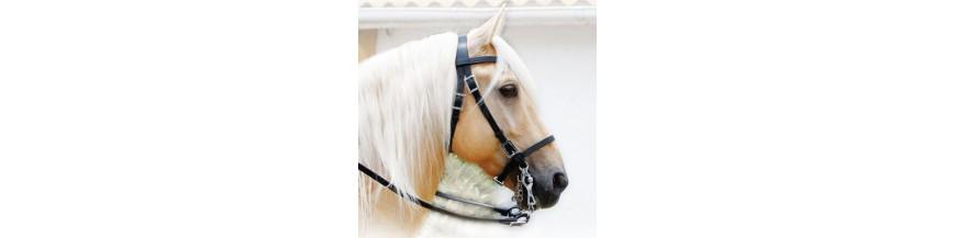 Cabezadas para caballos de todas las variedades al mejor precio.