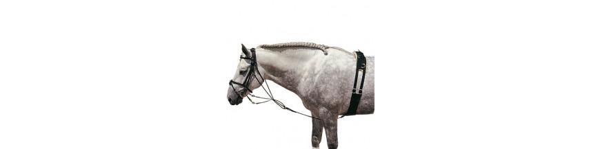 Gogues para caballo. Accesorios de equitación.