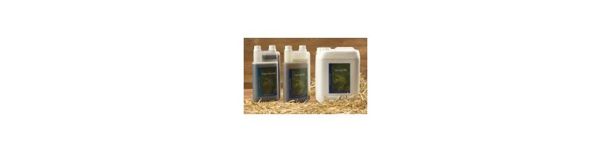Productos para las vías respiratorias del caballo