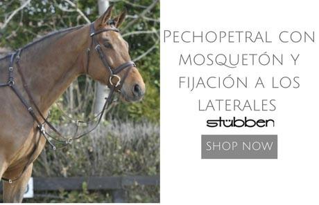 Pechopetral Stubben